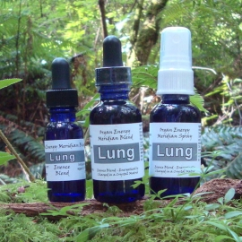 Metal/Air Element: Lung Organ Energy Meridian Essence Blend