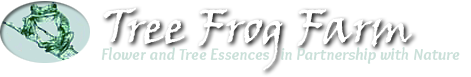Tree Frog Farm Store - Flower Essences | Flower Remedies | Tree Frog Farm